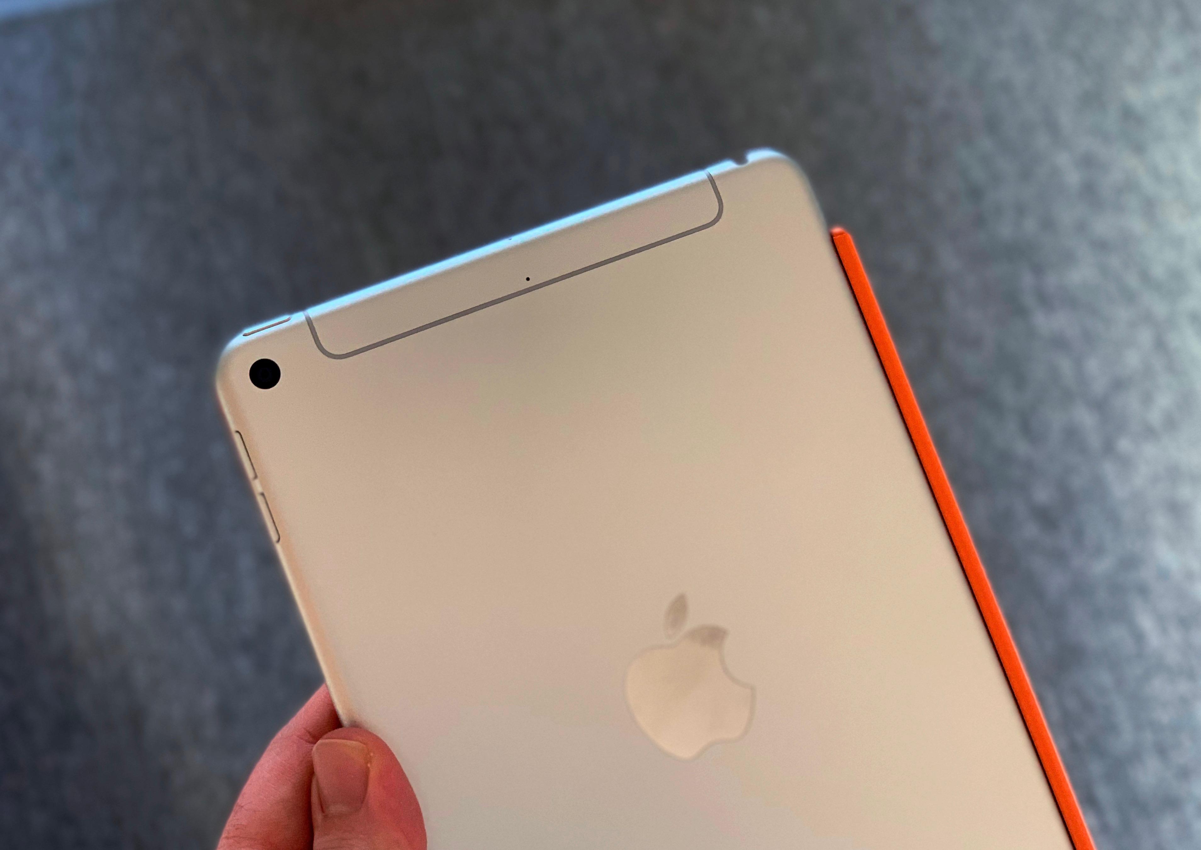 Rückseite des iPad Mini